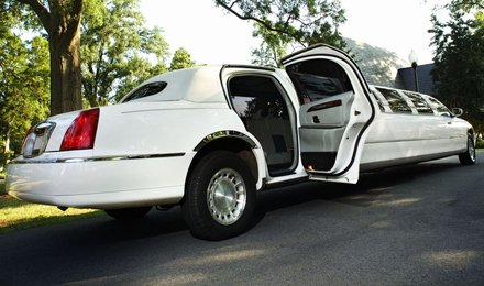 Limo Employ Business
