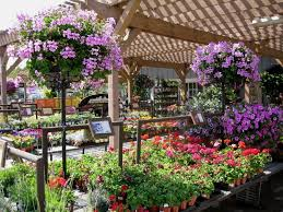 Garden Center Outlet Improvement - Why this is Helpful?